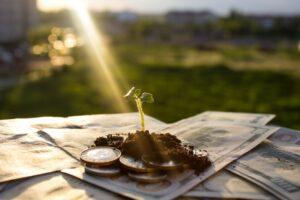 cannabis-investors-stocks-profitable-growing